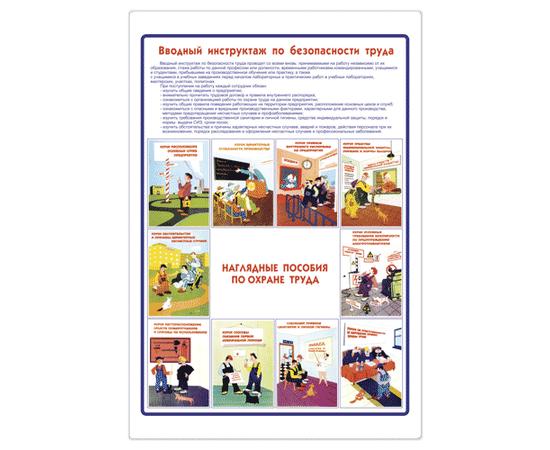 Плакат Вводный инструктаж по Охране Труда (1 лист), фото 1