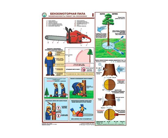 Плакаты Бензомоторная пила. Безопасность работ на лесосеке, фото 1