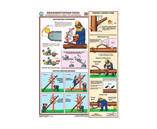 Плакаты Бензомоторная пила. Безопасность работ на лесосеке, фото 2